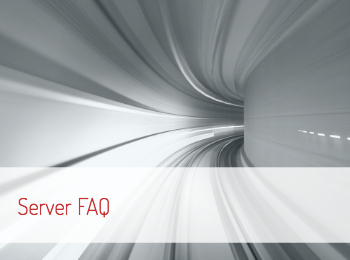 Users can tunnel-like image to view the Puma Scan Pro Server License Frequently Asked Questions
